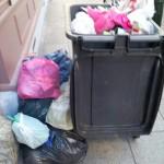 poubelles eventrées 111213